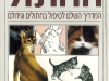 345991-cat_big2